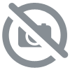 CARNY WHITE TUNA AND BEEF COMPLEMENTARY FOOD 80G